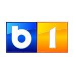 logo_0012_b1